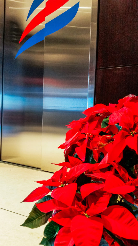 Poinsettias in the hallway at Endeavor